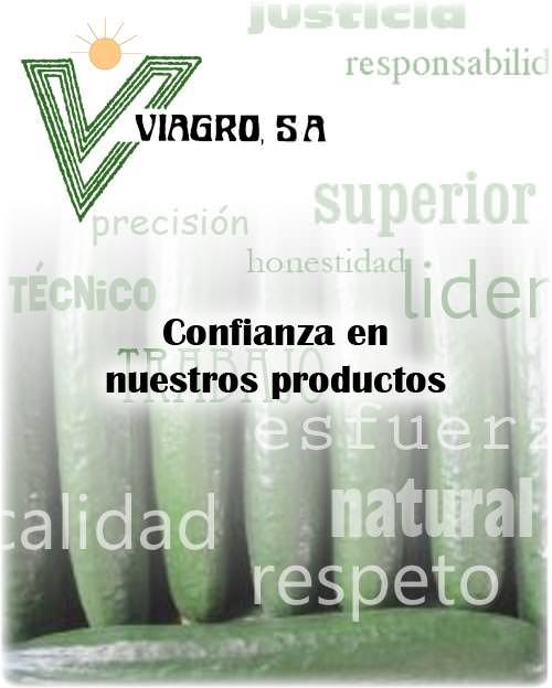 pepinos_Viagro