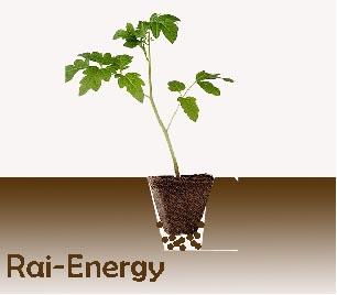 rai_energy_viagro_2